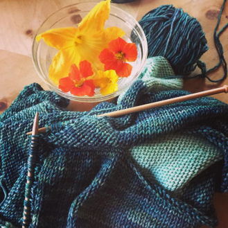 work in progress turquoise and seafoam colored merino wool malabrigo yarn knit sweater with decorative nasturtiums and squash blossoms in a bowl